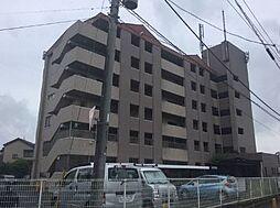 埼玉県さいたま市見沼区大字中川の賃貸マンションの外観