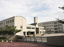 星陵台中学校(...