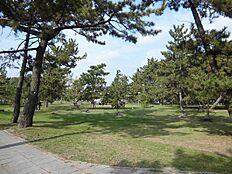 曽根松原公園…約980m