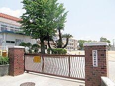 野口小学校…約30m