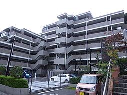 ヴェラハイツ松戸[307号室]の外観