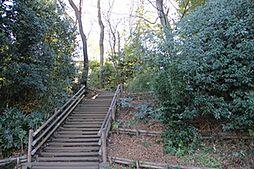 西渡戸緑地公園...