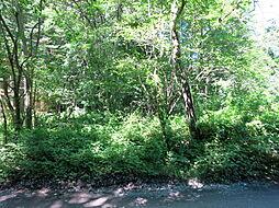 敷地内には木々...