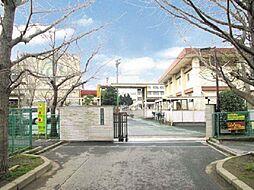 菅野小学校 8...