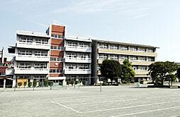 中学校高崎市立...