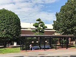 市立北柏病院