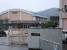 小学校岡崎小学校まで1100m