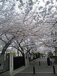 桜寺前[1階]の外観