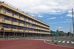 芦口小学校