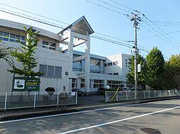 秋田市立 牛島...