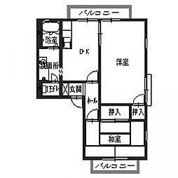 サングレイス横山[203号室号室]の間取り