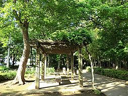 谷津の森公園 ...