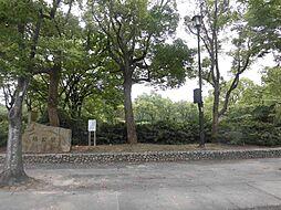 楠公園まで徒歩...