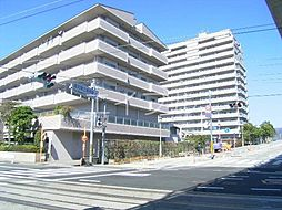 アルファステイツ高須[7階]の外観