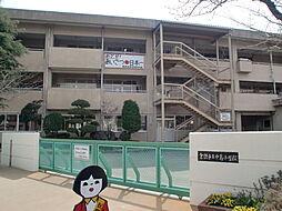 中島小学校84...