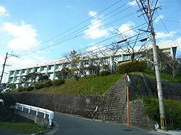 鹿児島商業高校