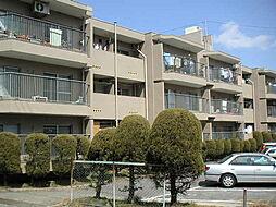平和が丘住宅7棟[105号室]の外観
