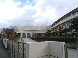 藤ケ岡中学校
