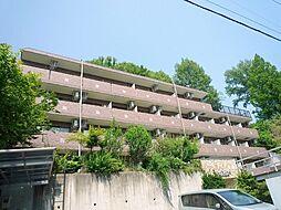 スターダスト晴貞[1階]の外観