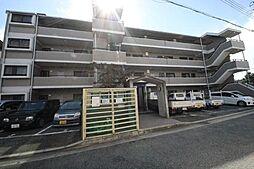 エコロシティ七松II[3階]の外観