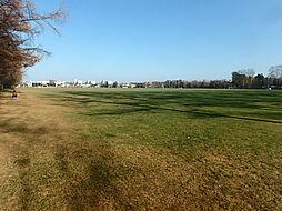 グリーンパーク...