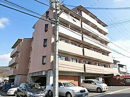 滋賀県湖南市中央5丁目の賃貸マンションの外観