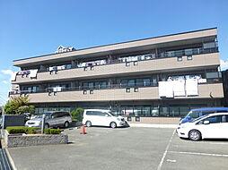 サンライズ堺[2階]の外観