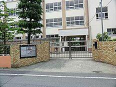 東伊興小学校...徒歩10分/750m