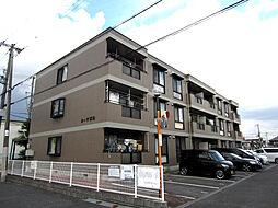 カーサ阪和[305号室]の外観