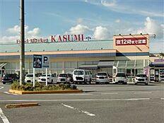 KASUMI(カスミ) 高津店(1787m)