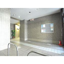 第20柴田マンション[5階]の外観