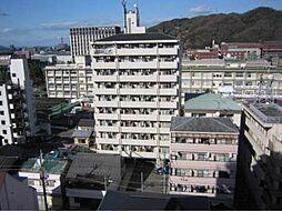 ライブタウン鉄砲町・[10階]の外観