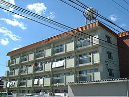シャトレ平田[2階]の外観