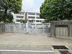 三沢中学校 約...