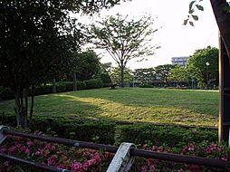 公園松之木公園...