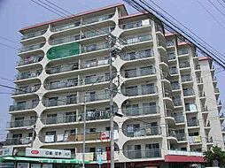 日商岩井 徳川ハイツ[10階]の外観