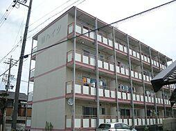 扇ハイツ[4階]の外観