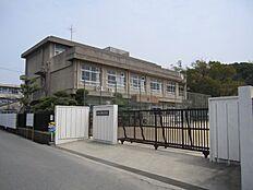 勝原小学校