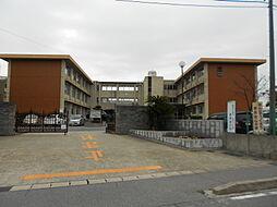 平坂小学校