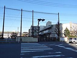 横浜市立子安小...