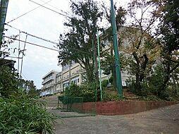 横浜市立橘中学...