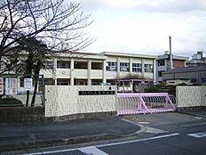 真菅幼稚園