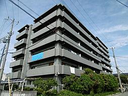兵庫県尼崎市大島1丁目の賃貸マンションの外観