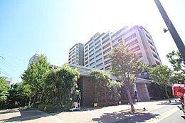 「ライオンズオーチャードガーデン」東武伊勢崎線「梅島」駅徒歩5分。7階・角部屋につき眺望・通風良好。上階にお部屋はありません。