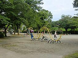 公園衣笠栄町3...