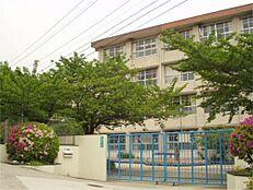 西宮市立苦楽園小学校(928m)