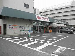 FCO・OP黒...