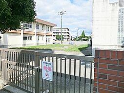 菅野小学校・・...