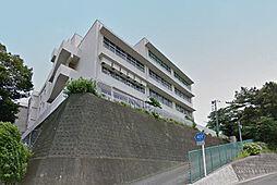 海老名小学校(...