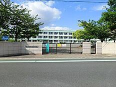 南奥戸小学校
